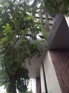 View from below of the School Of The Arts, Singapore.