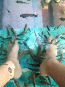 Fish foot massages are a great little treat after a long day on your feet.