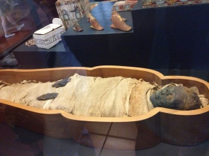 A mummy in the Egyptian wing on the museum.