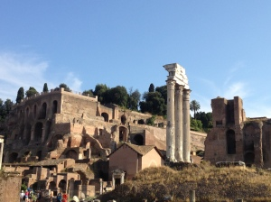 Some of the first sights I saw upon setting foot in the Roman Forum.