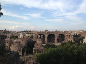View from the top of the surrounding area and of the Forum itself.