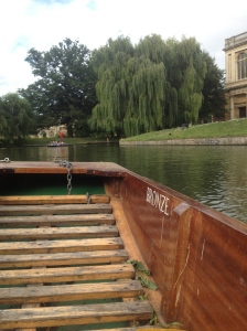 Our punts name was Bronze.