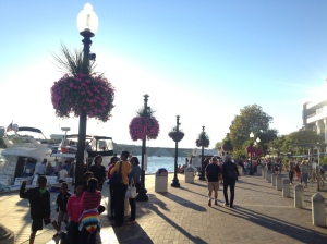 The waterfront by the Potomac River.