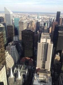 Concrete Jungle: New York.