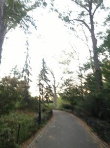 Strolling through Central Park.