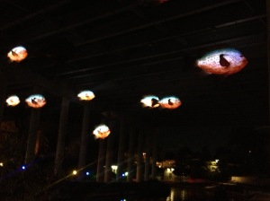 Illuminated fish hanging from one of the bridges Hector and I passed under on our ride home up the river.