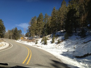 Beginnings of snow on the drive up.