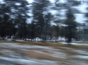 Snow scattered ground as the bus departed Flagstaff.